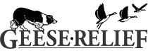 Geese Relief LLC Small Logo